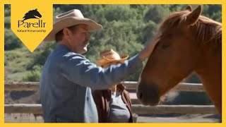 Download Solve Catching Issues with a Problem Horse - Parelli Inside Access DVD Video