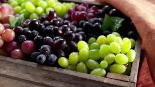 Download Steve van Zyl Food Shots Video