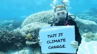 Download March 2017: A message from the Great Barrier Reef to the world. Video