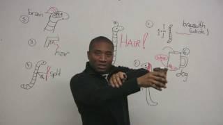 Download English Idioms - HAIR Video