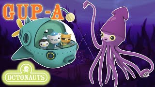 Download Octonauts - Deepest Depths of the Midnight Zone | Gup A | Aquatic Vehicles Video