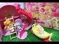 Download プリンセスプリキュア ハートフルハウス プリコーデハウス アニメ Go! Princess PreCure Toy Video