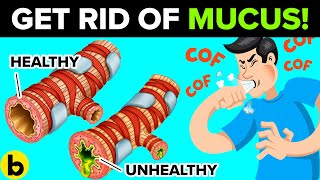 Download How To Get Rid Of Mucus & Phlegm In Your Chest & Throat Video