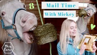 Download Mail Time With Mickey 8 | This Esme Video