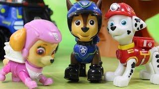 Download Przygoda z krową | Psi patrol | Bajki dla dzieci Video