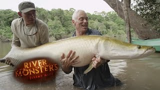 Download Reel Time Catch: Arapaima On A Fly - River Monsters Video