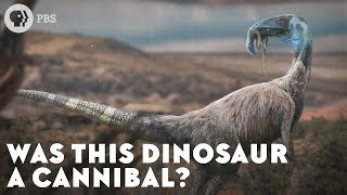 Download Was This Dinosaur a Cannibal? Video