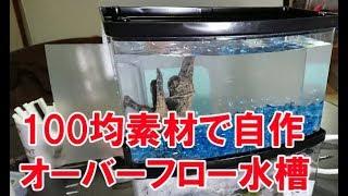 Download 【!危険!】100円均一素材で憧れのオーバーフロー水槽を作った!【危険なのでマネしないでください】 Video