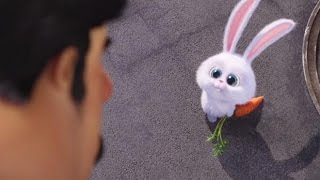 Download The Secret Life of Pets| Official #2 Trailer | Universal Pictures Canada Video