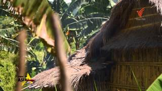 Download Spirit of Asia: The Aeta ... the Dark Complected People of Luzon Video