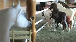 Download Breyer Horse Movie: The New Horses Video