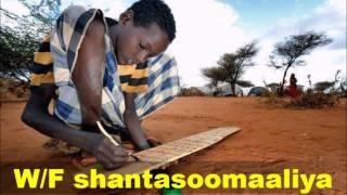 Download Jaamacadaha Diinta Koonfur Soomaaliya Quraanka Sawdkan Ayaa Lagu Akhrin Jiray Taariikhda Video