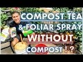 Download Compost Tea WITHOUT Compost! | YEAR-ROUND Nutritional Foliar Spray | SCALE Pest Control Video