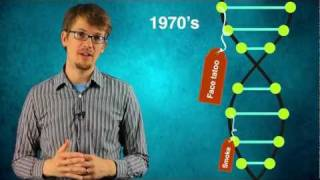 Download Epigenetics Video