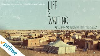 Download Life is Waiting | Trailer | Available now Video