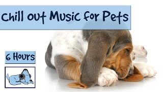 Download 6 Hours of Chill Out Music for Your Pet. For Hyper, Stressed or Anxious Pets. Video