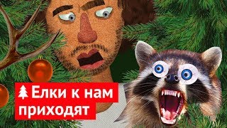Download Ёлочное безумие: меня укусил енот! Video