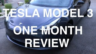 Download Tesla Model 3 - One Month Review Video