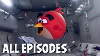 Download Angry Birds Zero Gravity | All Episodes Video