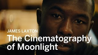 Download The Cinematography of Moonlight with Cinematographer James Laxton Video
