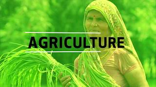 Download Agriculture and the Sustainable Development Goals Video