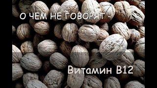 Download О ЧЕМ НЕ ГОВОРЯТ – Витамин B12, Нехватка Б12, Бактерии B12. В печени витамин B12 сохраняется 3 года! Video