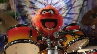 Download Dr. Teeth and The Electric Mayhem are Going to Outside Lands 2016 | The Muppets Video