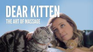 Download Dear Kitten: The Art Of Massage Video