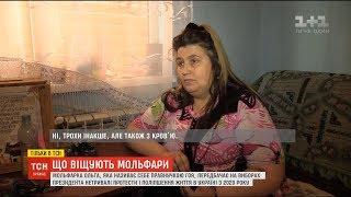 Download Пророцтва мольфарів: хто вийде у другий тур виборів та коли в Україні настане мир Video