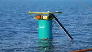 Download DSM's partnerships with The Ocean Clean Up and Evonik are making the oceans more sustainable Video