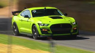 Download The Mustang GT500 at Goodwood Festival of Speed 2019 - Vaughn Gittin Jr. Video