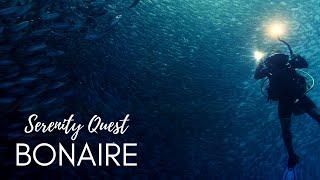 Download BONAIRE DIVERS PARADISE - CARIBBEAN SEA - WORLD BEST DIVING - 4K VIDEO Video