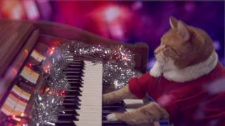 Download Keyboard Cat Santa is Coming to Town Video