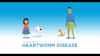 Download Learn the importance of heartworm prevention from THRIVE. Video