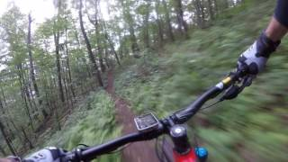 Download 2018 Giant Trance 2 Review: First Mtn Ride Video