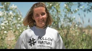 Download LIFE Followers Video