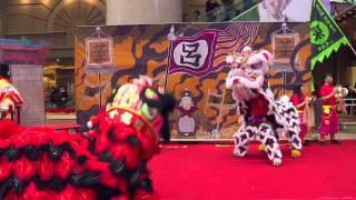 Download 時代廣場「一代醒獅」展覽 - 獅劇 三英戰呂布 20150215 Video