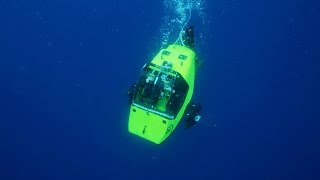 Download Submersible Finds Sharks in a Kill Zone Video