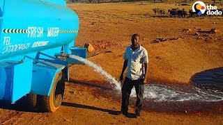 Download Man Drives Hours to Give Animals Water During A Drought | The Dodo Video