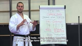 Download Wadokai Karate Seminar: What is Nagasu? 和道流 空手 流す Video