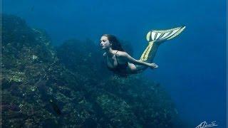 Download Underwater photo shoot with Mermaid Kat Video