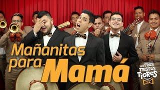 Download Mañanitas para Mamá - Los Tres Tristes Tigres Video
