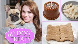 Download DIY DOG TREATS Video