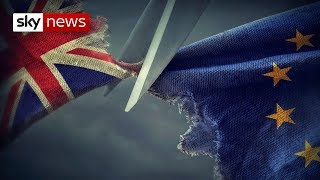 Download What a 'no-deal' Brexit could mean for the UK Video