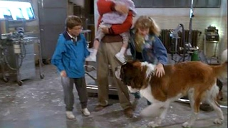 Download beethoven (1992)- beethoven rescued! HD Video