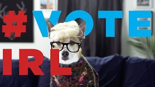 Download Meet the #voteIRL Dogglegangers Video