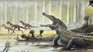 Download مخلوقات ما قبل التاريخ اكتشفت في الآونة الأخيرة..!! Video