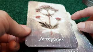 Download Unboxing the Magickal Herb Oracle Video