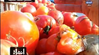 Download انتباه | ملخص كارثة مصانع الطماطم والكاتشب في مصر Video