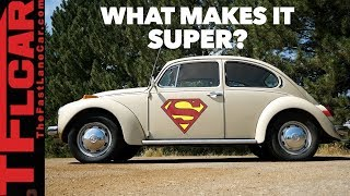 Download What the Heck is a SUPER Beetle? | Beetle Diaries Ep. 6 Video